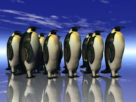 penguins Standard-Bild