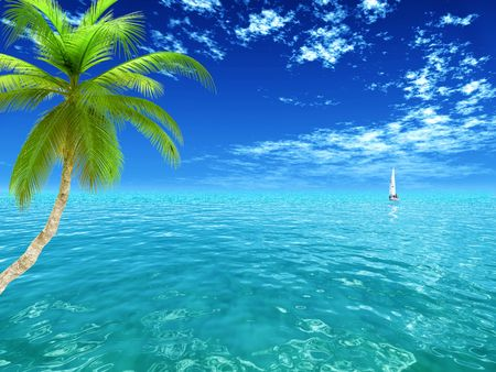 generic view of tropical ocean and a palm tree
