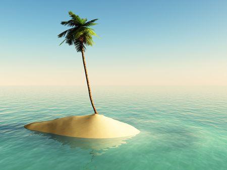 Kleine Insel mit einer Palme Standard-Bild - 7975883