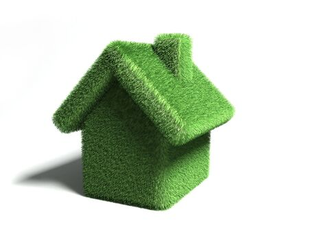 abstract house covered by grass