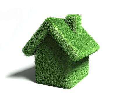 Casa abstracta cubierto por la hierba