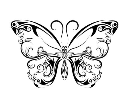 Beautiful black and white butterfly isolated on white background