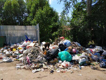 Garbage dump in residential area Zdjęcie Seryjne