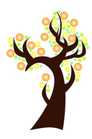 citrus tree: �rbol de c�trico