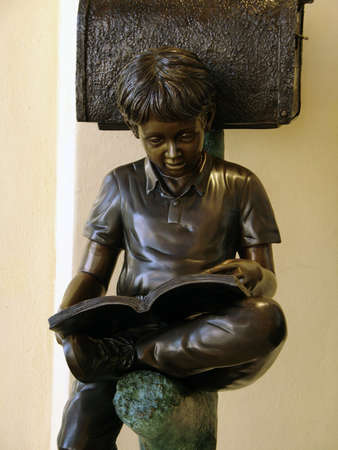 indoctrinate: Young Boy Reading