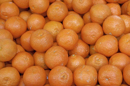 Paris market tangerines Stock Photo - 1261487