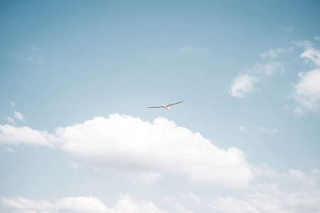 land slide: A glider flying on a sunny day against a blue sky Stock Photo