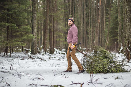 Young man is caryying christmas tree in the wood Reklamní fotografie