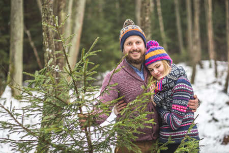 Lovers have a walk in the winter wood to cut a fir tree Reklamní fotografie - 48369376