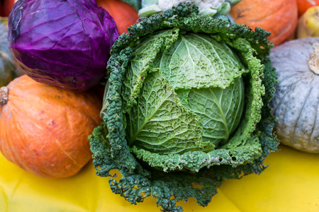 savoy: Savoy cabbage with other vegetables Stock Photo
