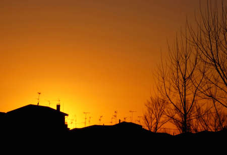 Sunset in the village with backlit trees and roof tops  Stock Photo