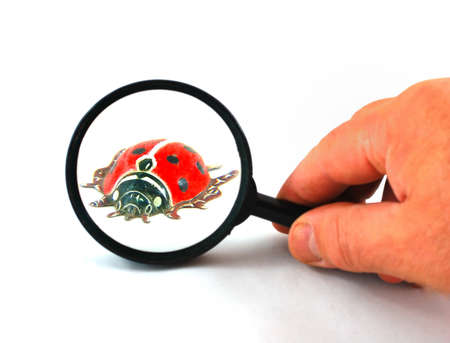Magnifying glass and tin toy representing a ladybug in red and black colour  photo