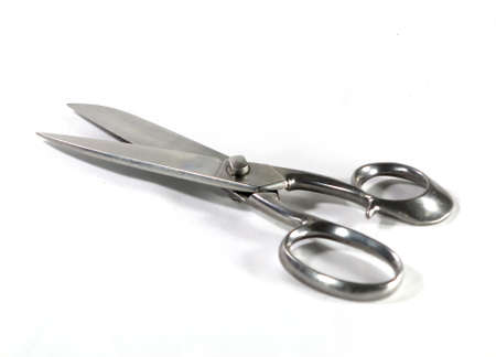 Stainless steel kitchen Shears on white background
