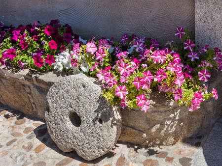 millstone: Purple flowers and millstone over gray background Stock Photo