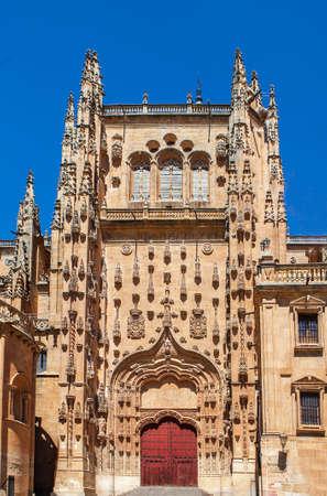 Salamanca Cathedral secundary door under blue sky. Spain
