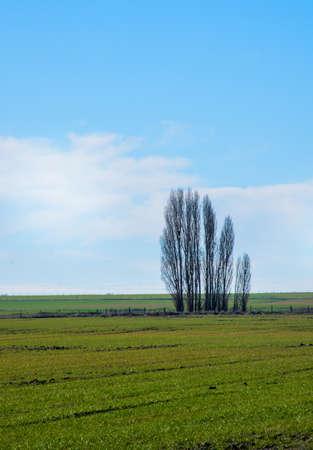 soledad: paisaje de oto�o en un d�a soleado verde, azul y la soledad. Foto de archivo