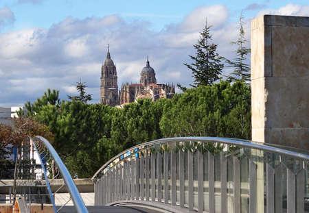 Salamanca Cathedral belfry under cludie sky. Spain