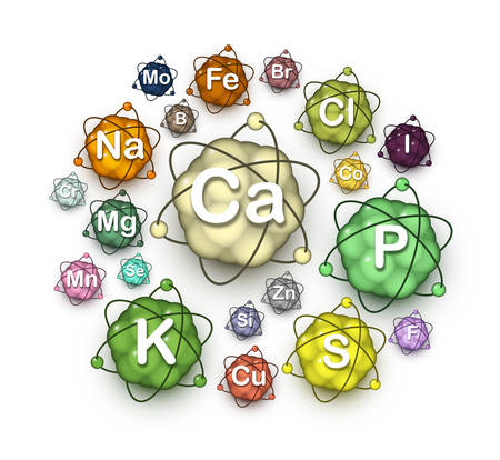 Various microelements, macroelements and minerals, vitally essential dietary nutrients and chemical elements for human health. Vector illustration.