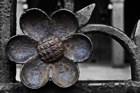 ferro: Fiore di ferro
