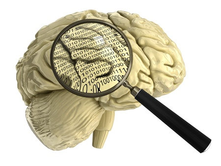human brain with Magnifying Glass photo