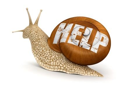 no rush: Help Snail