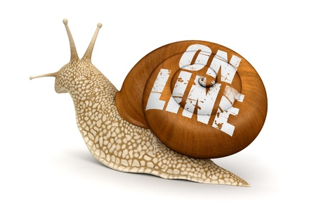 On-line Snail  photo
