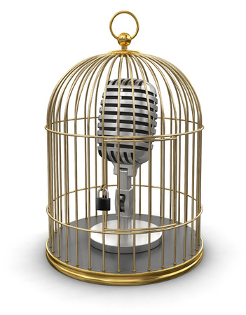 Gold Cage with Microphone  photo