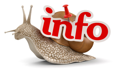 Snail and info   photo