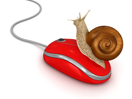 no rush: Snail and Computer Mouse  clipping path included  Stock Photo