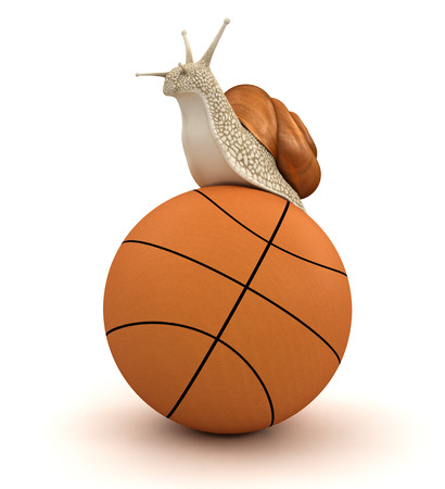 no rush: Snail and basketball  clipping path included