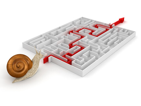 no rush: Snail and Maze  clipping path included