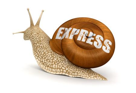 no rush: Express Snail