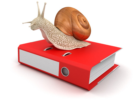 no rush: Snail and Document