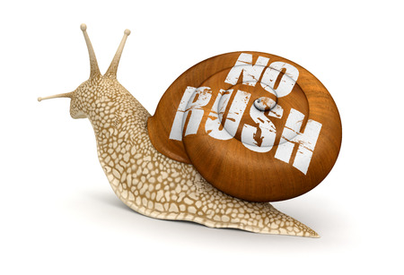 No rush Snail Stock Photo - 22534968