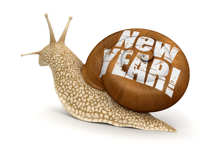 no rush: Snail New Year