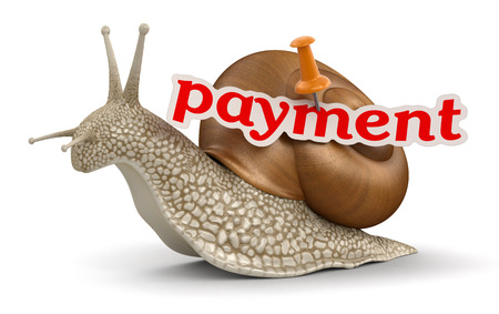 no rush: payment Snail  clipping path included