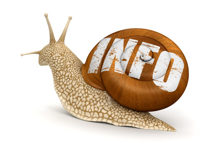 no rush: Snail and info   Stock Photo