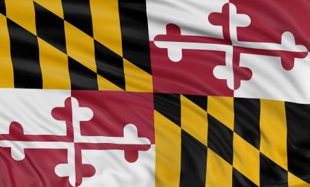 3D Maryland Flag photo