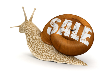 no rush: Sale Snail  Stock Photo