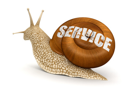overtake: Service Snail  clipping path included  Stock Photo