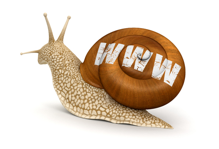 no rush: Snail and WWW  Stock Photo