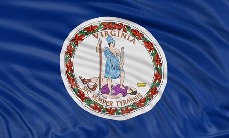 3d virginia: 3D Virginia  Flag