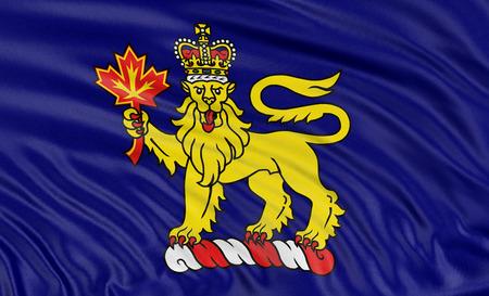 governor: 3D governor general flag of Canada