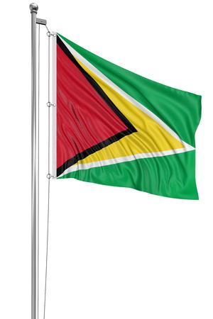 Guyana: 3D Guyana flag
