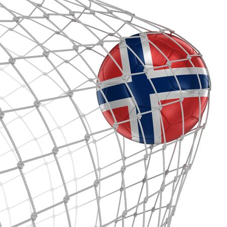 soccerball: Norwegian soccerball in net.  Stock Photo