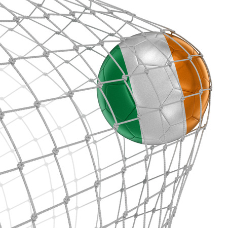 soccerball: Irish soccerball in net.