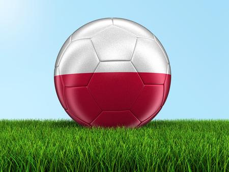 bandera de polonia: F�tbol f�tbol con la bandera polaca en la hierba