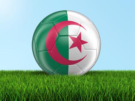 algerian flag: Soccer football with Algerian flag on grass. Image with clipping path Stock Photo