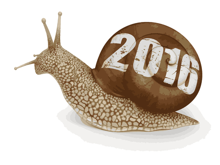 no rush: Snail 2016