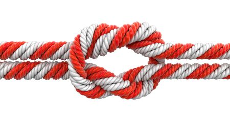 tied knot: Tied knot. Image with clipping path Stock Photo